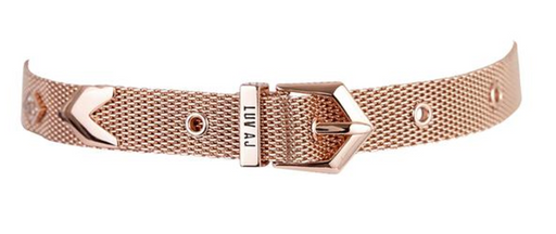 Mesh Buckle Choker | Rose Gold
