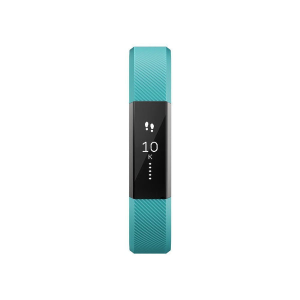 Alta Classic Accessory Band Teal - Large
