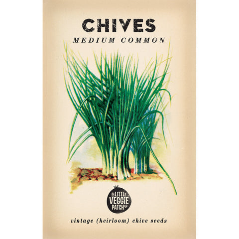 Chive Seed