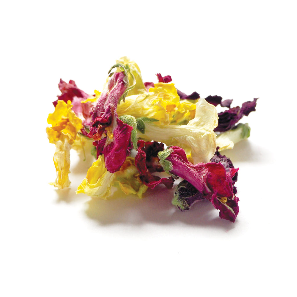 Dried Organic Edible Snap Dragon