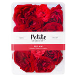 Rose Miniature Red