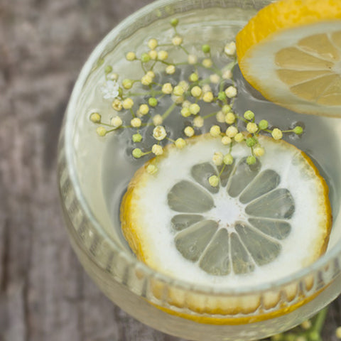 Elderflower Cordial with Dried Edible Elderflowers