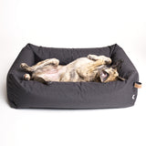Cloud7 | Hundebett Sleepy Graphit, wasserdicht - Hund von Eden