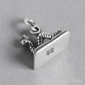 Sterling Silver Bookworm on Book Charm Pendant