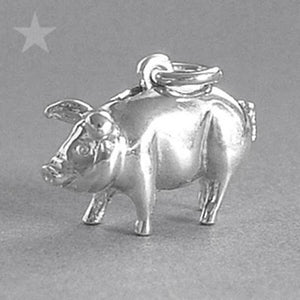 Piggy Bank Money Box Charm Pendant