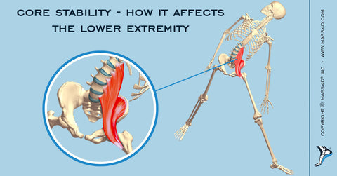 Core Stability – How It Affects The Lower Extremity