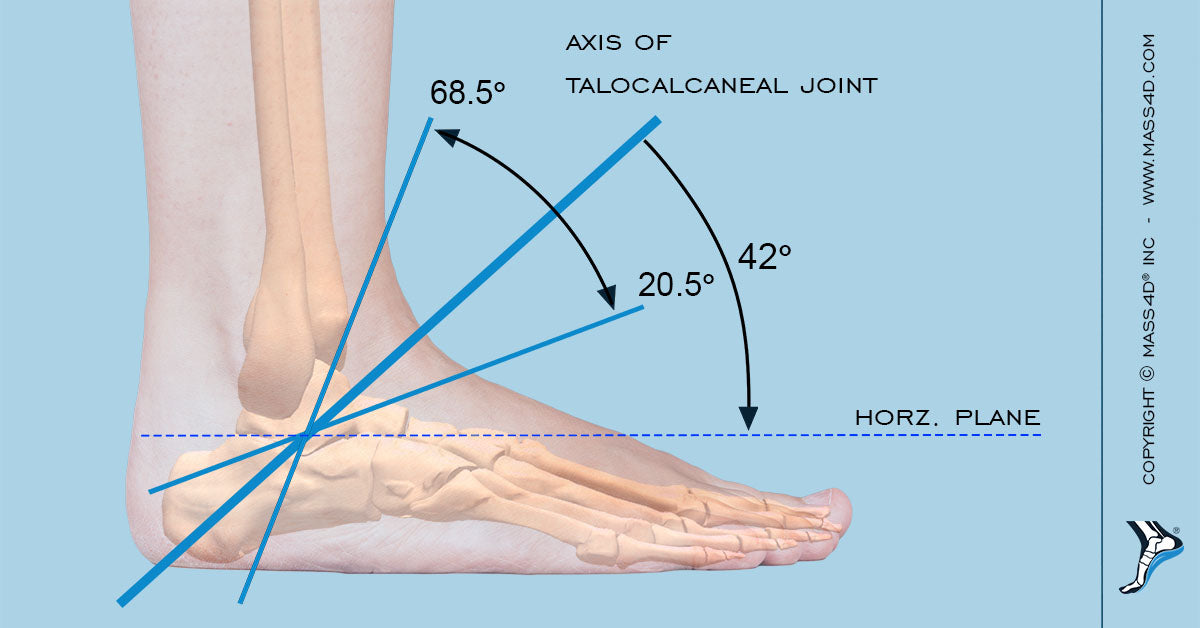 Foot Biomechanical Theories Explained