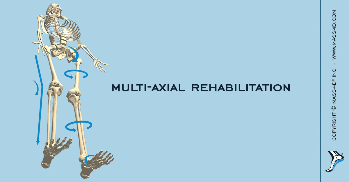 Rehabilitation as an Integrated Approach