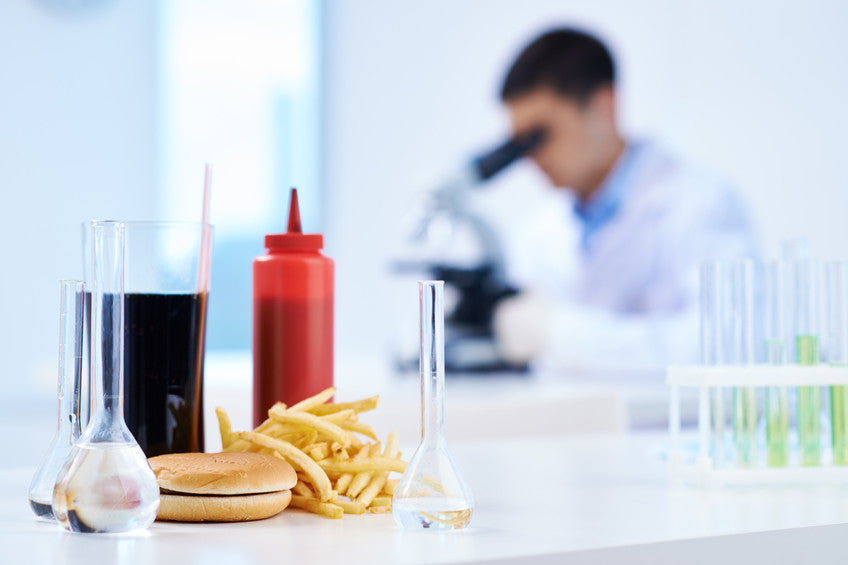 Why we are all addicts: the extraordinary science of junk food