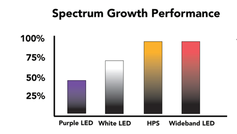 Electric Sky Spectrum Growth Performance