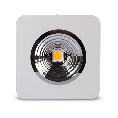 Johnson CX-1R COB LED Grow Light