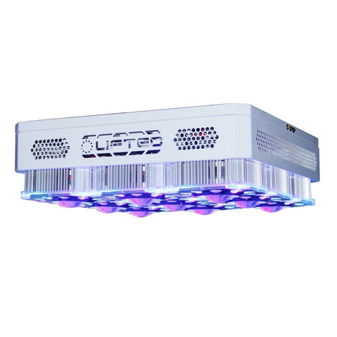Lifted LED Town COB Full Spectrum Grow Light