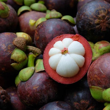 Move Aside Shea And Cocoa: Kokum Butter Is The New Star In Town