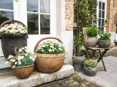 outside terrace planters pots, baskets flowers