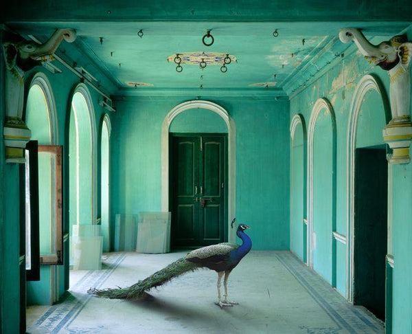 Rajasthan Diaries: India Song by Karen Knorr - Dilli Grey