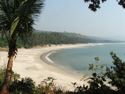 Kashid Beach in Maharsahtra
