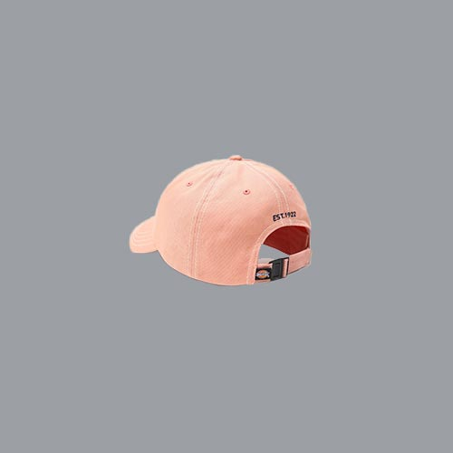Dickies Granada Cap Light Pink