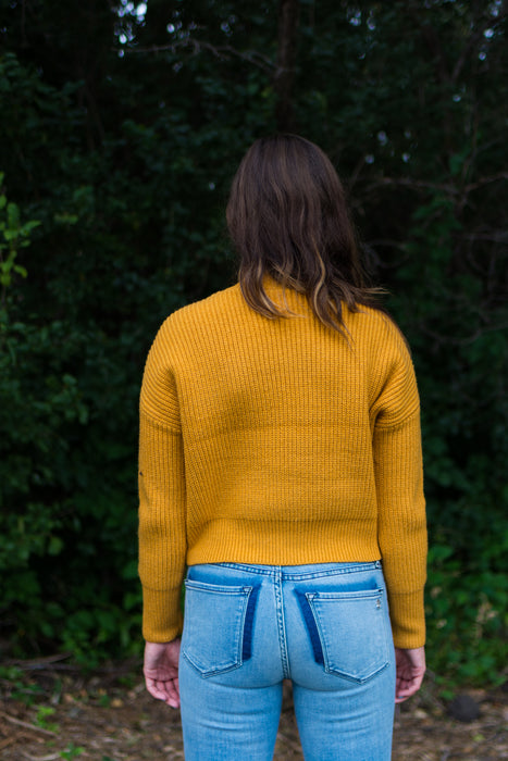 Hey Pumpkin Crop Sweater