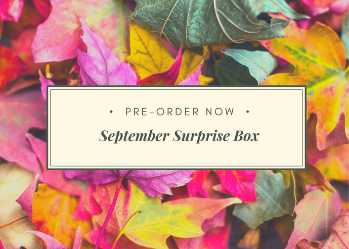 September Surprise Box