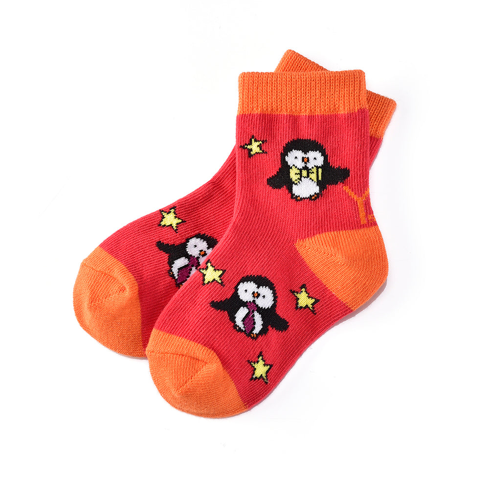 A Star is Born: Toddler Socks (Age 1-2) - Yo Sox Canada