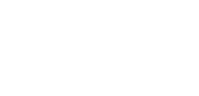 The Brooklyn Hot Dog Company