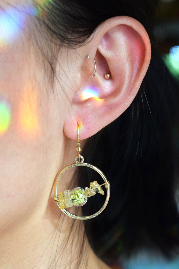 Artemis Terrarium Earrings