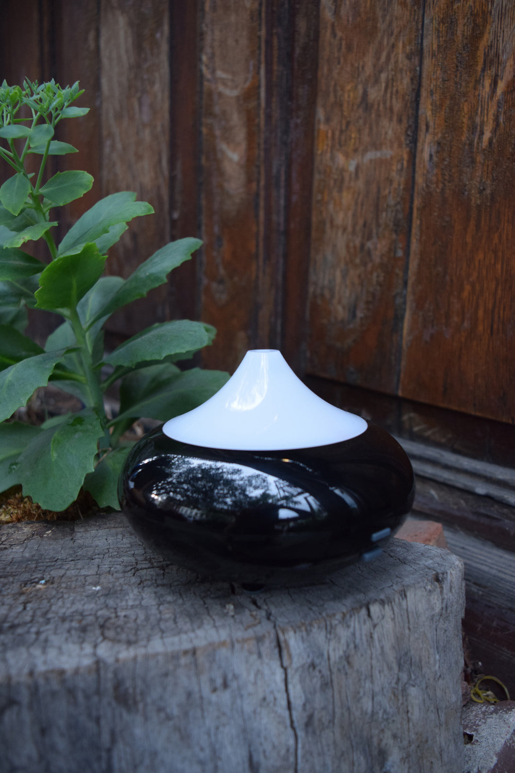 Essential Oil Plug-In Diffuser