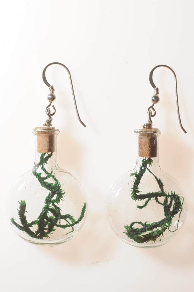 Round Bottle Terrarium Earrings with Spanish Moss