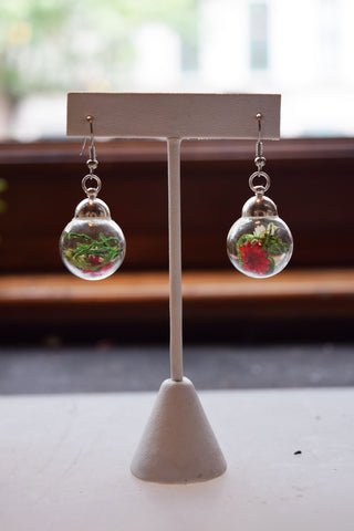 Spanish Moss and Dried Flower Terrarium Earrings