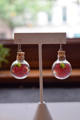 Wide Sphere Terrarium Earrings with Cork Top
