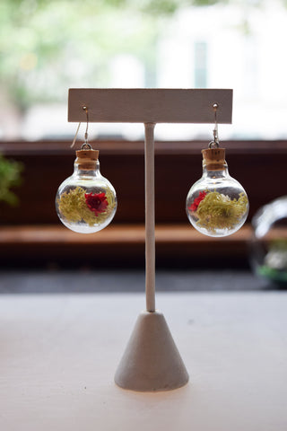 Wide Sphere Terrarium Earrings with Light Green Moss