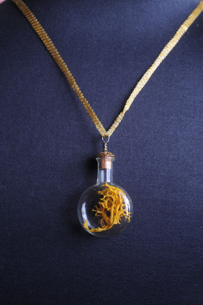Classic Round Glass Bottle Terrarium Necklace