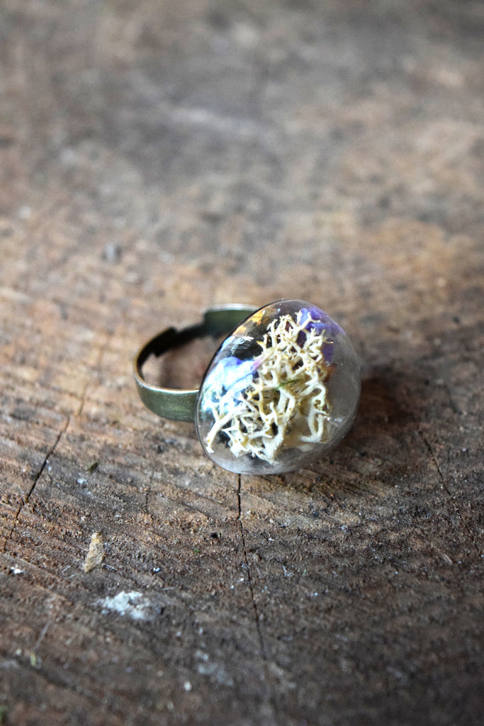 White River Terrarium Ring