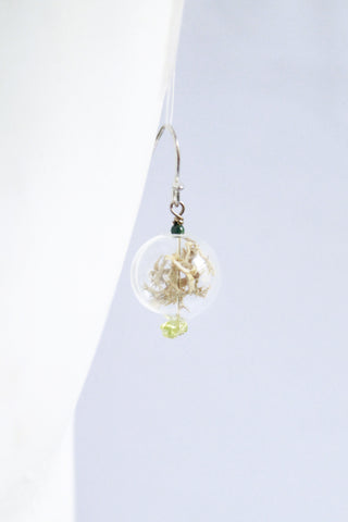 Cloud Forest Terrarium Earrings