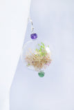 Sour Cherry Large Terrarium Earrings