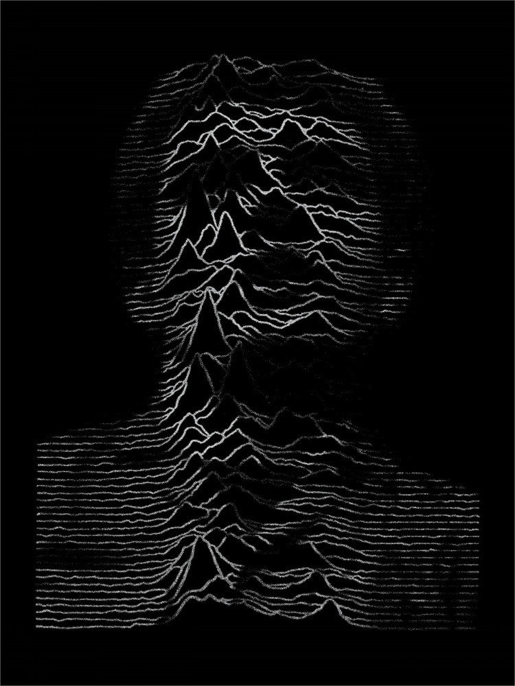 Shadowplay | Limited Edition Joy Division Screen Print | Never Made