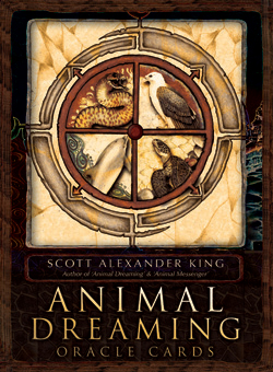 Animal Dreaming Oracle Cards - King -  Scott Alexander