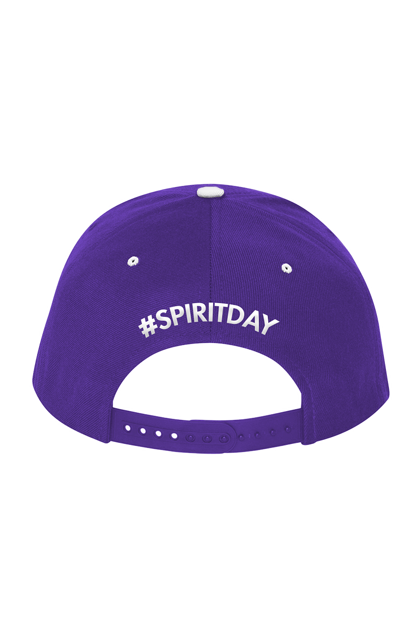 Spirit Day Purple Hat