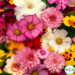 Floral Bar Soaps | Soap Round-Up