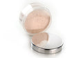 Perfect Skin Translucent Mineral Rich Loose Powder