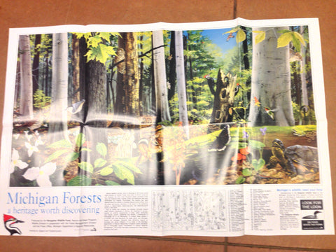 Michigan Forests Poster