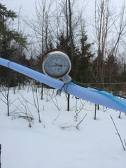 Vacuum gauge on our maple sap lines