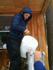 Corrie pouring maple sap out of a bucket