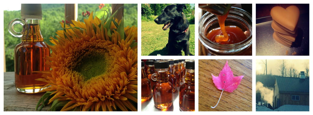 Sap Hound Maple Company Pictures