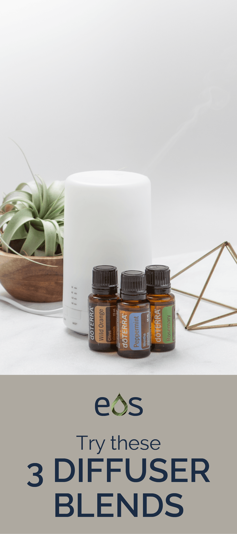 Try these 3 diffuser blends!