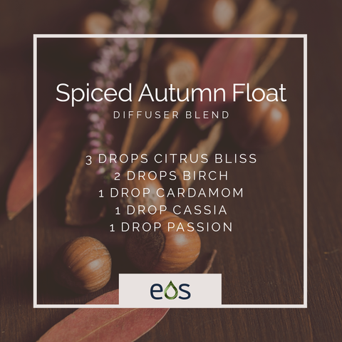 Spiced Autumn Float Essential Oil Diffuser Blend