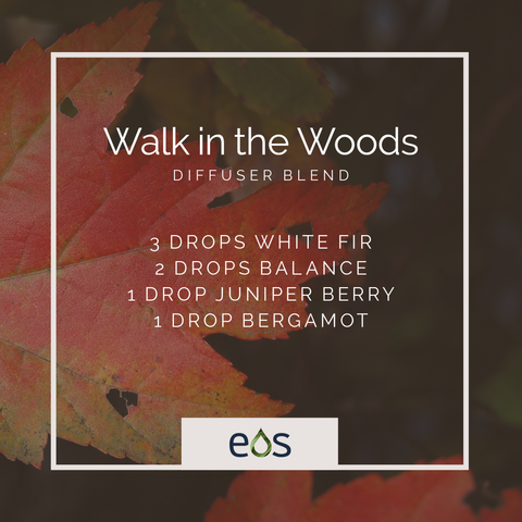 Walk In The Woods Essential Oil Diffuser Blend