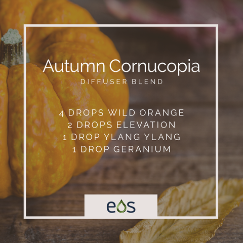 Autumn Cornucopia Essential Oil Diffuser Blend
