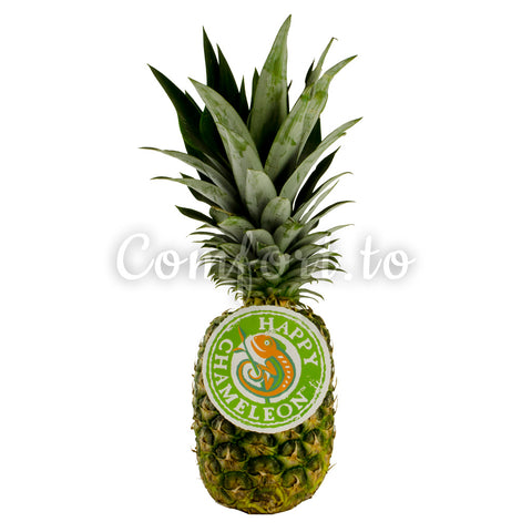 Pineapple, average size