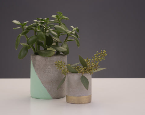 Urban Concrete Candle Repurposed as succulent or herb planters by paddywax at Division IV
